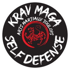 kravmaga arts martiaux toulois
